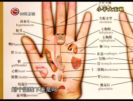 手部诊断示意图