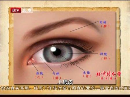 眼睛的示意图